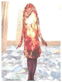 2-030, Tashi, fire body b