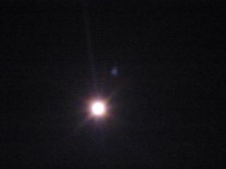 2-041, Darla as a star